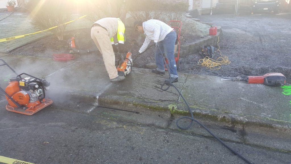 Cutting a Concrete Curb